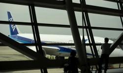 El Boeing 787 Dreamliner visto desde el interior de la terminal de Tokyo.