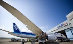 Los dos primeros Boeing 787 Dreamliner de ANA lucirán una decoración especial, solo desde el tercero llevarán los colores normales de la compañía.