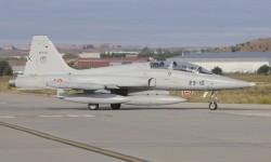 los F-5B están radiantes con su decoración gris claro
