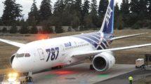 ANA fue la primera aerolínea en recibir el Boeing 787. Su primeros ejemplares portaban esta decoración especial para resaltar ese hecho.