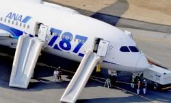El aterrizaje de emergencia y evacuación de un Boieng 787 de ANA ha sido el detonante final que ha llevado a parar al Boeing 787