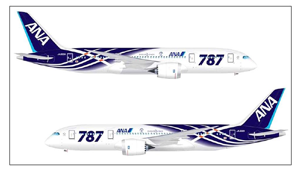 AN_787_perfil