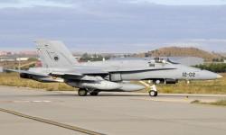 Cinco F/A-18 monoplazas han participado en el desfile aéreo