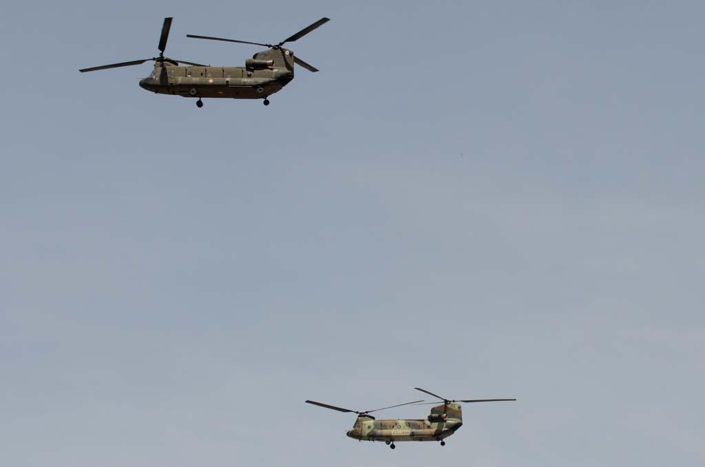 Los dos Boeing CH-47 Chinook del Batallón de Helicópteros de Transporte V con base en Colmenar lucían camuflajes diferentes.