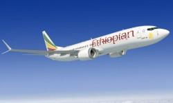 Ethiopian cuenta actualmente con una flota de cinco Boeing 737-700 y ocho B-737-800 entre otros aviones.