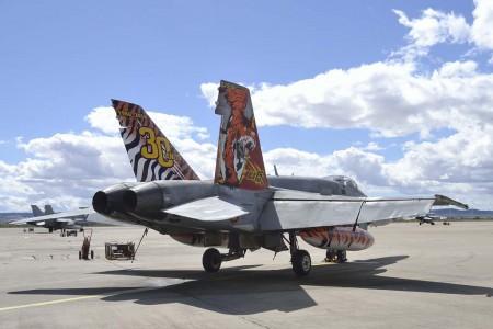 El nuevo avión tigre del Ala 15 para el Tiger Meet 2016. (foto Ejército del Aire)