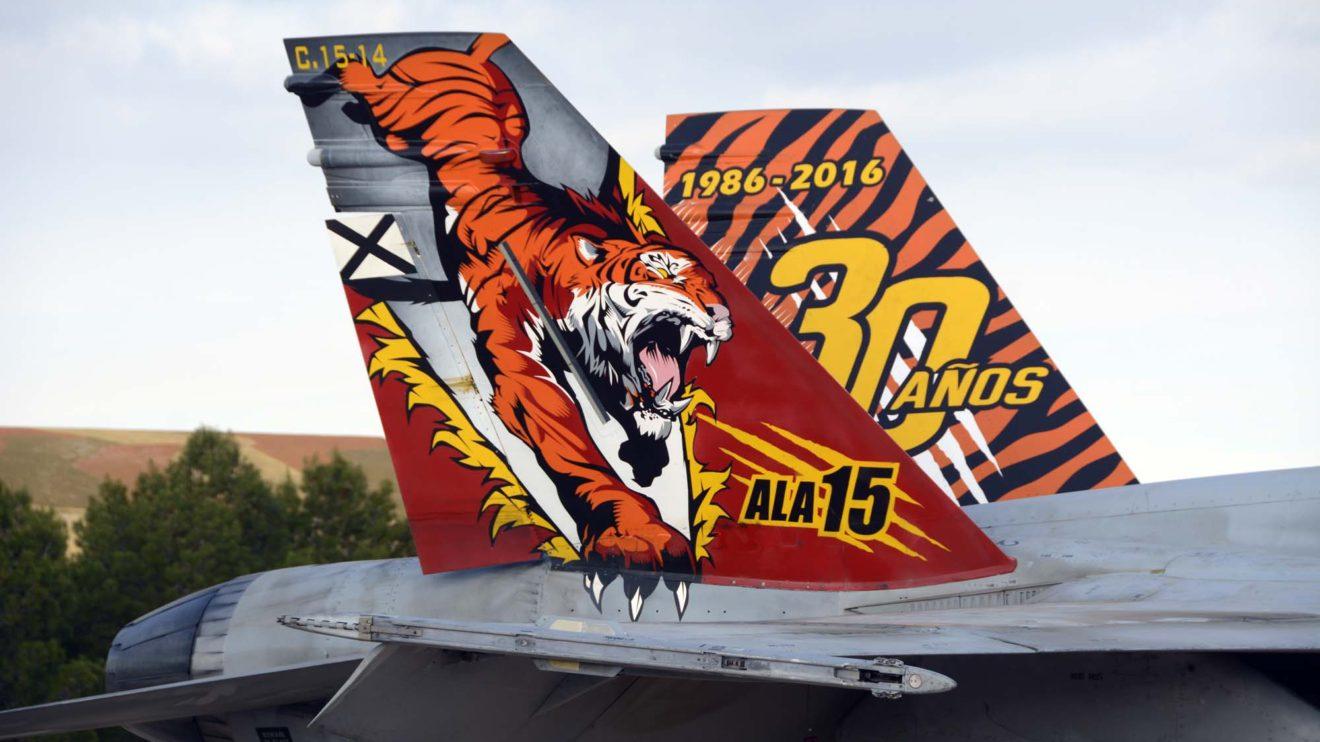 El Ala 15 fue creada el 16 de diciembre de 1985 poco antes de recibir sus primeros F/A18. A lo largo de su historia ha decorado especialmente varios de sus aviones para diversas celebraciones.