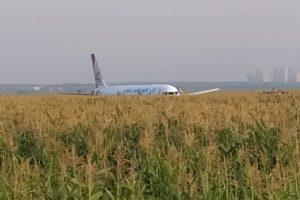 El A321 fotografiado en el campo de maiz por uno de los pasajeros que iban a bordo.