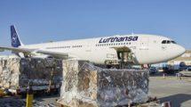 La carga y el mantenimiento supusieron para el Grupo Luftansa casi el 90 por ciento de sus ingresos en el segundo trimestre de 2020.