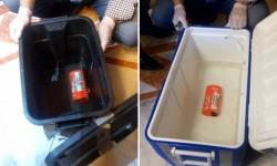 Los módulos de memoria de las dos cajas negras del A320 de Egyptair tras su recuperación del fondo del Mediterráneo.