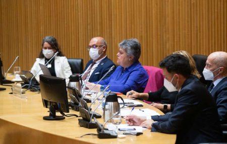 Pilar Vera, presidenta de la Asociación de Afectados del Vuelo JK5022 en su comparecencia ante la comisión del congreso de los Diputados.