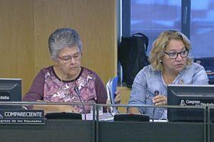 Pilar Vera, presidenta de la Asociación de Afectados del Vuelo JKK5022 (izquierda) durante su intervención en el Congreso de los Diputados.